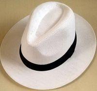 White Fedora Straw Hat